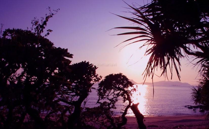 クバ林奥の浜