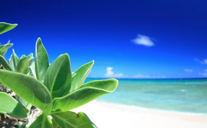 ウーグの浜